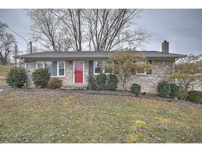 Johnson City Single Family Home For Sale: 4201 Englewood Blvd