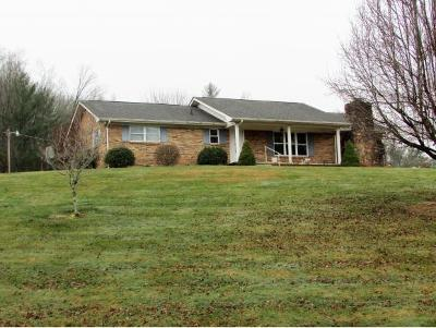 Butler Single Family Home For Sale: 4316 Highway 321