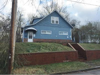 Johnson City Single Family Home For Sale: 617 Franklin