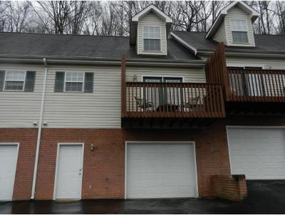Johnson City Condo/Townhouse For Sale: 308 Car Mol Drive #16