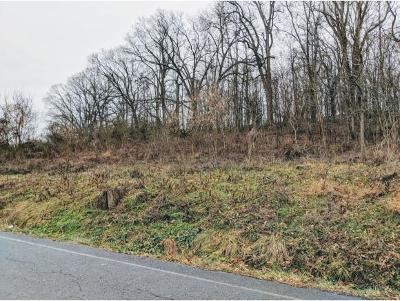 Residential Lots & Land For Sale: Clear Springs