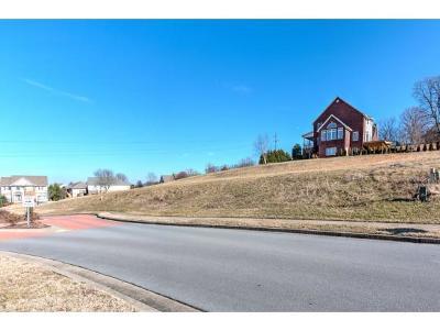 Johnson City Residential Lots & Land For Sale: 29 Azalea Ridge