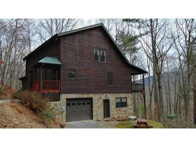Erwin Single Family Home For Sale: 198 Morgan Way