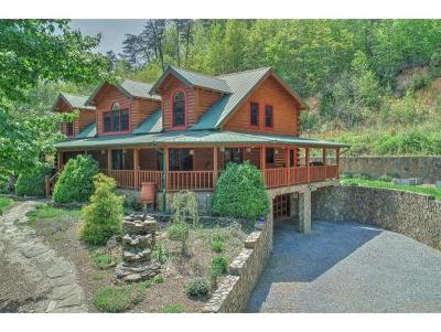 Single Family Home For Sale: 990 N Friendship Road