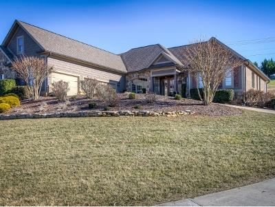 Johnson City Single Family Home For Sale: 225 Lakeridge Drive