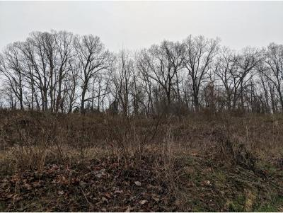 Residential Lots & Land For Sale: Clear Springs Road