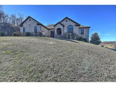 Johnson City Single Family Home For Sale: 2889 Knob Creek Road