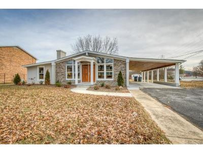 Kingsport TN Single Family Home For Sale: $174,900