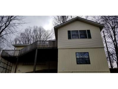 Roan Mountain Single Family Home For Sale: 1652 Highway 143