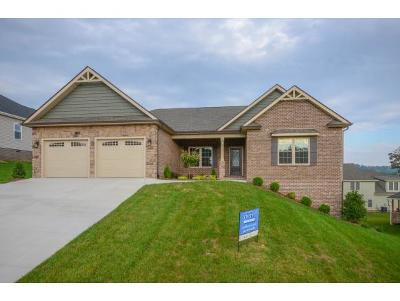 Kingsport Single Family Home For Sale: 3132 London Road