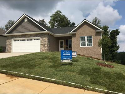 Kingsport Single Family Home For Sale: 3066 Calton Hill