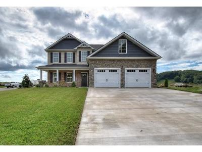 Kingsport Single Family Home For Sale: 3069 Calton Hill