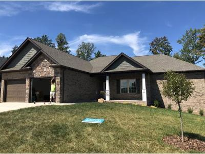 Kingsport Single Family Home For Sale: 3070 Calton Hill
