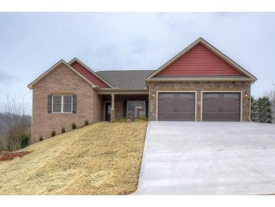 Kingsport Single Family Home For Sale: 3074 Calton Hill