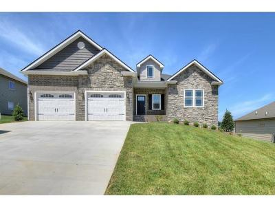 Kingsport Single Family Home For Sale: 3136 London Rd