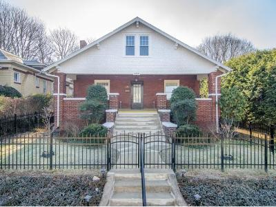 Johnson City Single Family Home For Sale: 425 W Locust St