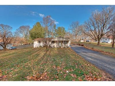 Bristol Single Family Home For Sale: 754 Meadow View Road