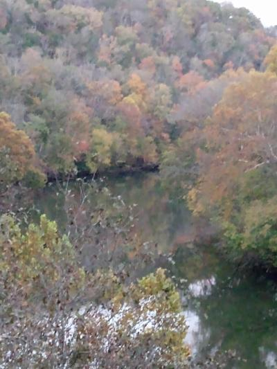 Greene County Residential Lots & Land For Sale: TBD Pates Hill Road