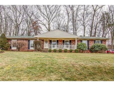 Kingsport TN Single Family Home For Sale: $150,000