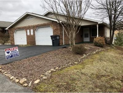 Kingsport TN Condo/Townhouse For Sale: $117,500