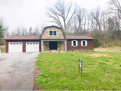 Elizabethton Single Family Home For Sale: 2196 Hwy 19 E