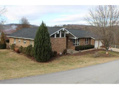 Kingsport TN Single Family Home For Sale: $229,500