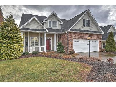 Kingsport Single Family Home For Sale: 935 Shadyside Drive