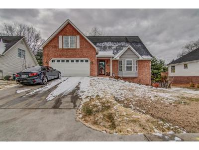Kingsport TN Single Family Home For Sale: $249,750