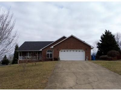 Kingsport TN Single Family Home For Sale: $215,000