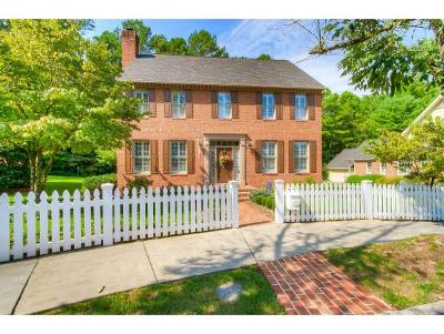 Kingsport Single Family Home For Sale: 17 Pendleton Place