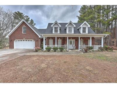Kingsport Single Family Home For Sale: 1230 Fall Creek Road