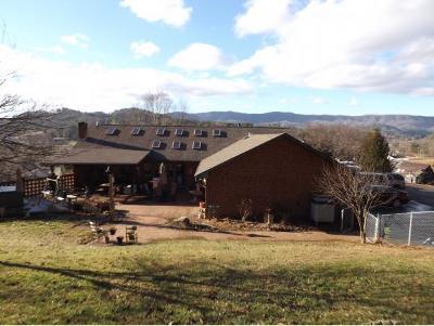 Mountain City Single Family Home For Sale: 508 N Shady Street