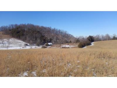 Residential Lots & Land For Sale: TBD Rock Quarry Rd