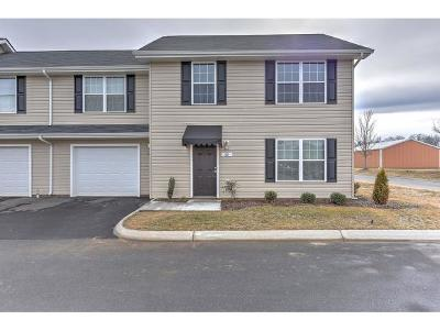 Piney Flats Condo/Townhouse For Sale: 396 Jonesboro #38