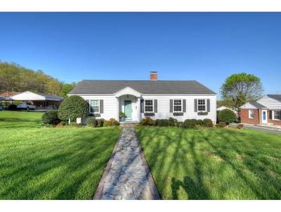 Elizabethton Single Family Home For Sale: 401 Paty Place