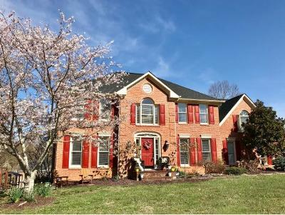 Bristol TN Single Family Home For Sale: $379,850