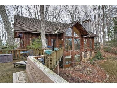 Johnson City, Kingsgport, Jonesborough, Kyles Ford, Watauga, Fall Branch Single Family Home For Sale: 2850 Carroll Creek Road