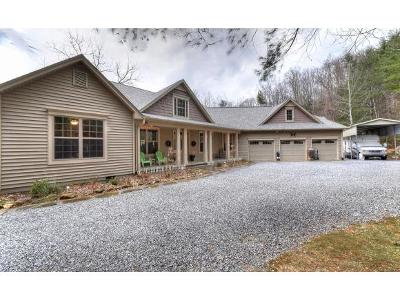 Erwin Single Family Home For Sale: 165 Price Road