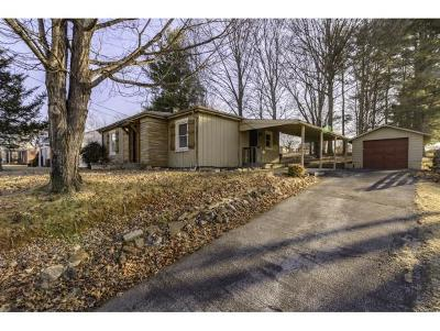 Bristol Single Family Home For Sale: 231 Old Abingdon Highway