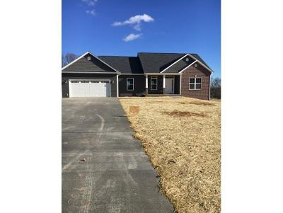 Piney Flats Single Family Home For Sale: 682 Allison Road
