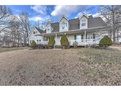 Blountville Single Family Home For Sale: 221 Brown Circle