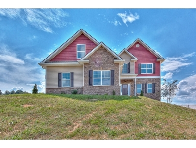 Jonesborough Single Family Home For Sale: 1332 Harmony Rd