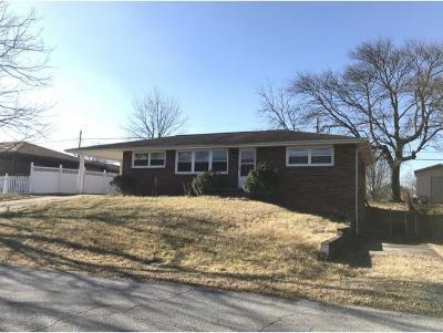 Kingsport Single Family Home For Sale: 1321 Holyoke St
