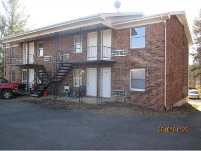Kingsport Multi Family Home For Sale: 105 Lemay Drive