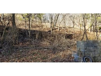 Johnson City Residential Lots & Land For Sale: 163 Lyons Drive