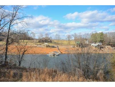 Johnson City Residential Lots & Land For Sale: 478 Lake Approach Drive