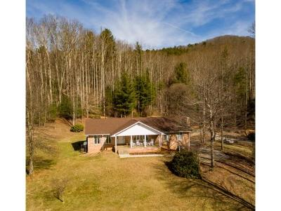 Elizabethton Single Family Home For Sale: 3095 Highway 91