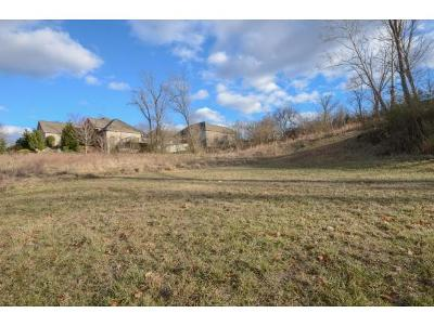 Johnson City Residential Lots & Land For Sale: 467 Lake Approach Drive