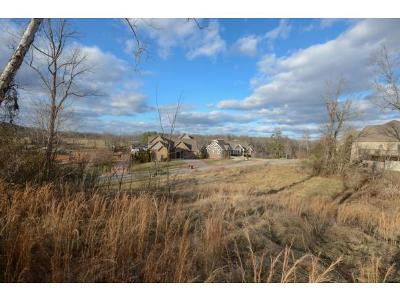 Johnson City Residential Lots & Land For Sale: 479 Lake Approach Drive