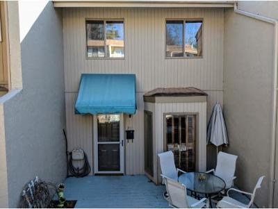 Bristol Condo/Townhouse For Sale: 5 Euclid Ave #211